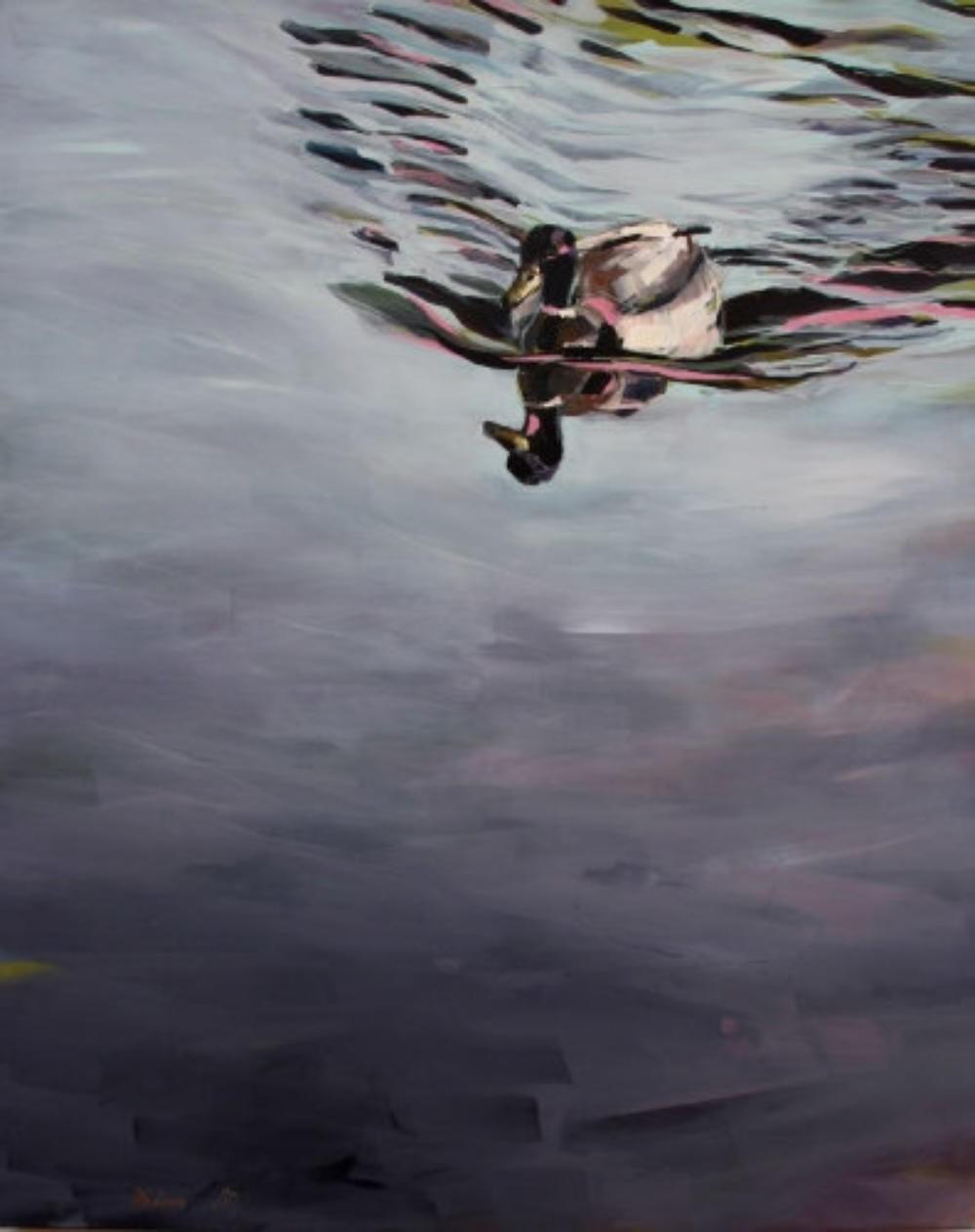 Erpel im Wasser