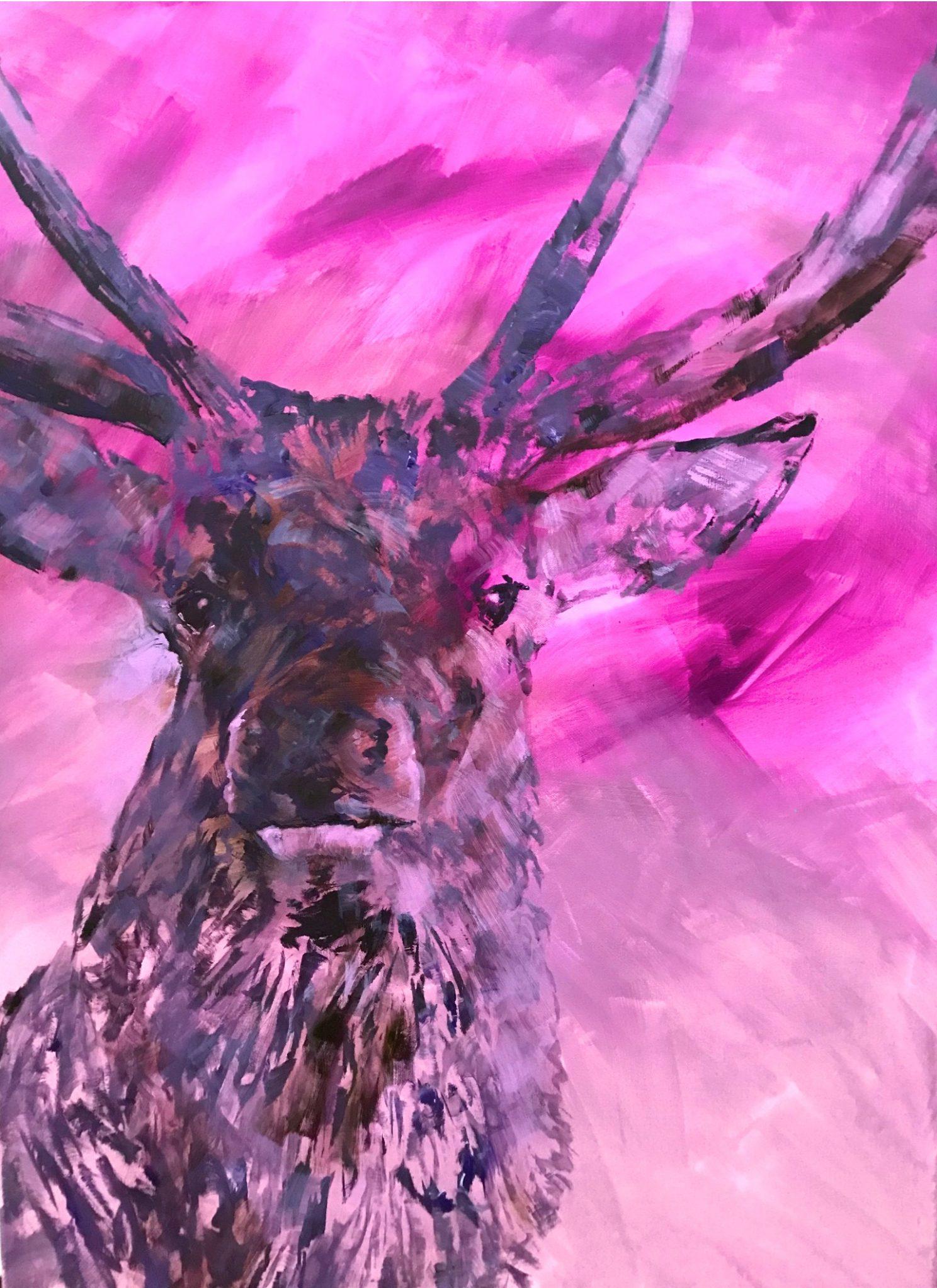 Hirsch in pink