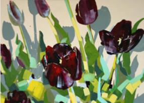 Samtrote Tulpen auf cremfarbenem Grund